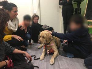 terapias asistidas con perros en barcelona